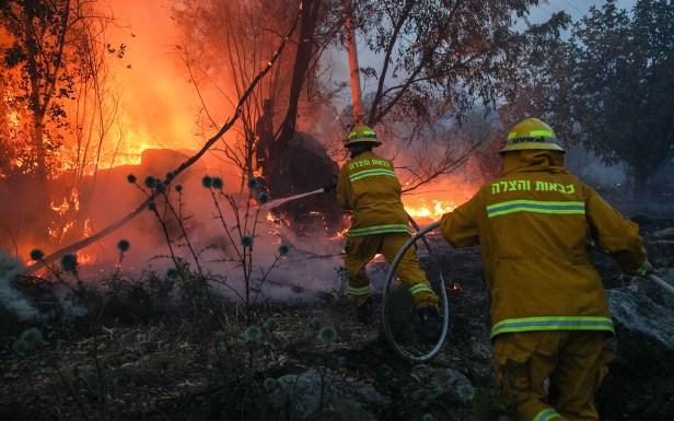 Api kian marak, Israel rayu bantuan antarabangsa padam kebakaran hutan