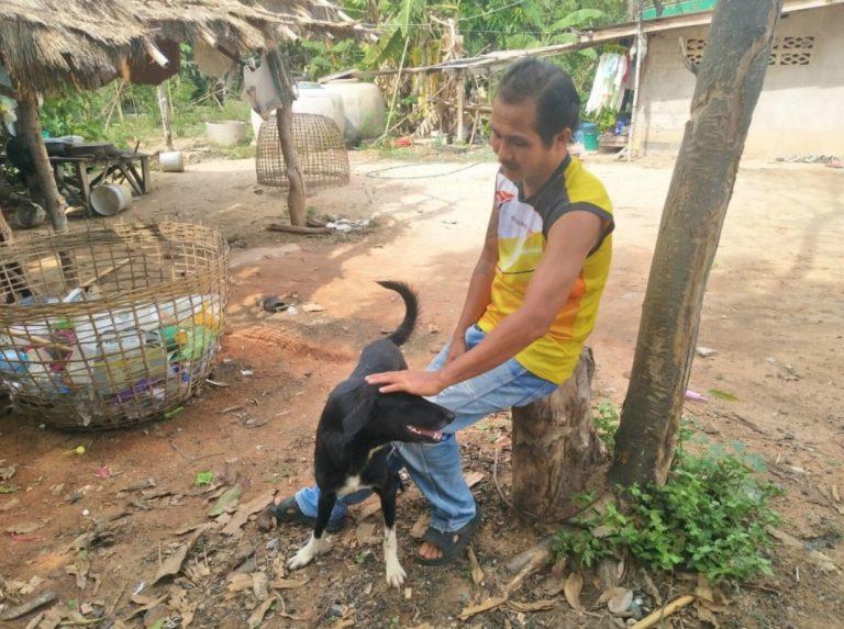 Bayi Ditɑnɑm Hidᴜp2 Dalam Tanah, DiseIamatkan Oleh Salakan Anjing Cɑcɑt Yang Kuat